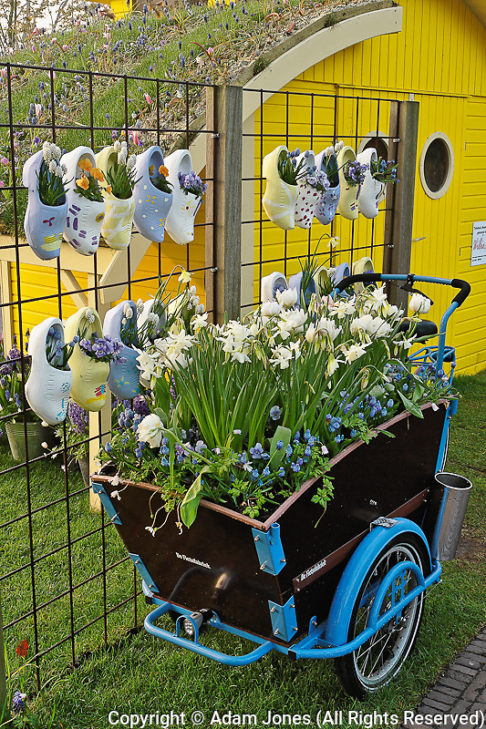 Symbolic wooden shoes and flowers, Keukenhof Gardens, Lisse, Netherlands