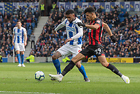Brighton & Hove Albion's Jurgen Locadia (left) battles with Bournemouth's Dominic Solanke (right) <br /> <br /> Photographer David Horton/CameraSport<br /> <br /> The Premier League - Brighton and Hove Albion v Bournemouth - Saturday 13th April 2019 - The Amex Stadium - Brighton<br /> <br /> World Copyright © 2019 CameraSport. All rights reserved. 43 Linden Ave. Countesthorpe. Leicester. England. LE8 5PG - Tel: +44 (0) 116 277 4147 - admin@camerasport.com - www.camerasport.com
