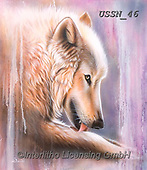 Sandi, REALISTIC ANIMALS, REALISTISCHE TIERE, ANIMALES REALISTICOS, paintings+++++dreamscapewolf4,USSN46,#a#, EVERYDAY ,wolf,wolves ,puzzles