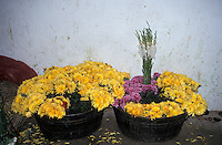 Flowers for sale at the market in Zunil near the city of Quetzaltenango, Guatemala