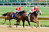 Hoofing Cat winning at Delaware Park on 9/17/12