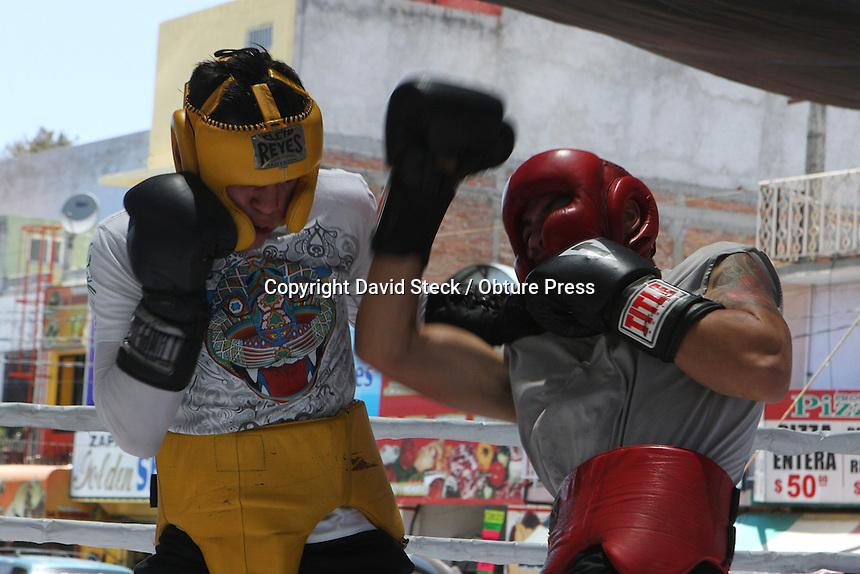 Quer&eacute;taro,Qro. 2 de Agosto 2014.: El campe&oacute;n mundial WBC categor&iacute;a plata supergallo, Andr&eacute;s &quot;El Jaguarcito&quot; Gutierrez y miembros del &quot;Team 4 Jaguares&quot; (gimnasio de box) llevaron a cabo un entrenamiento p&uacute;blico en las afueras del mercado Escobedo de esta ciudad.<br /> <br /> Se aprovech&oacute; la oportunidad para invitar al p&uacute;blico en general a la funci&oacute;n de box del pr&oacute;ximo s&aacute;bado 9 de Agosto en el Auditorio Arteaga, donde &quot;El Jaguarcito&quot; expondr&aacute; su corona en la pelea titular con seis peleas m&aacute;s, donde estelarizar&aacute;n tambi&eacute;n Victoria &quot;Vicky&quot; Argueta y Francisco P&eacute;rez &quot;Verdugo. <br /> <br /> Foto: David Steck / Obture Press Agency