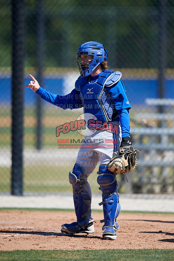 Toronto Blue Jays catcher Reilly Johnson (7) during a Minor League Spring Training Intrasquad game on March 14, 2018 at Englebert Complex in Dunedin, Florida.  (Mike Janes/Four Seam Images)
