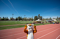Oswald<br />