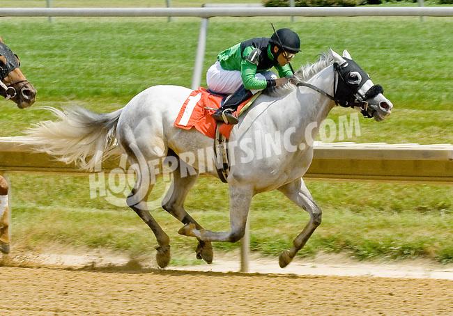 Mr. Commissioner winning at Delaware Park on 6/9/12