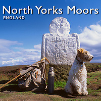 North Yorks Moors National Park Pictures, Images & Photos