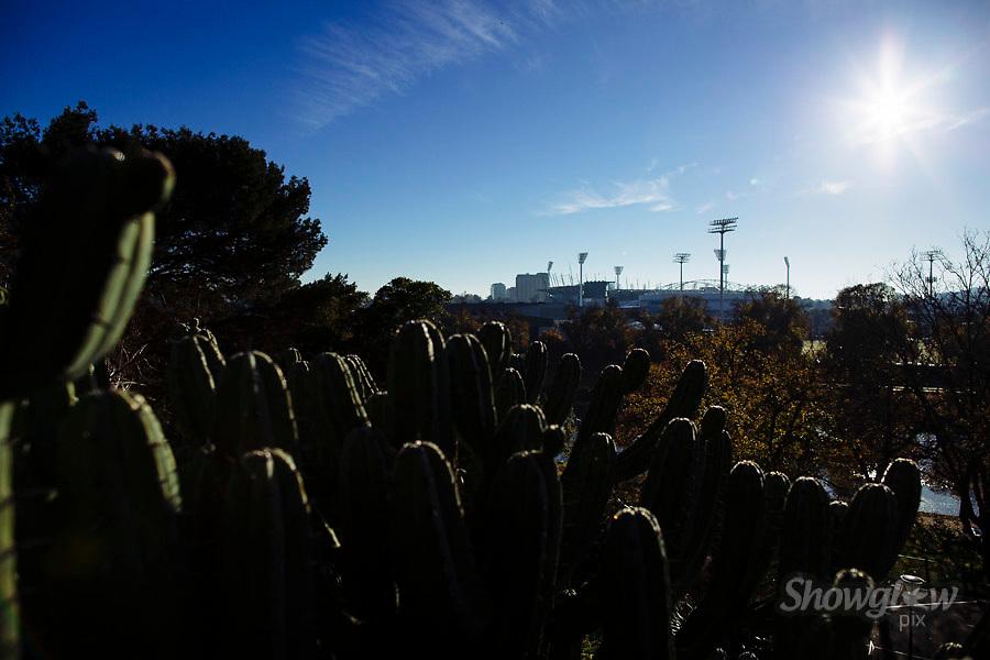 Image Ref: M311<br /> Location: Royal Botanical Gardens, Melbourne<br /> Date: 10.06.17