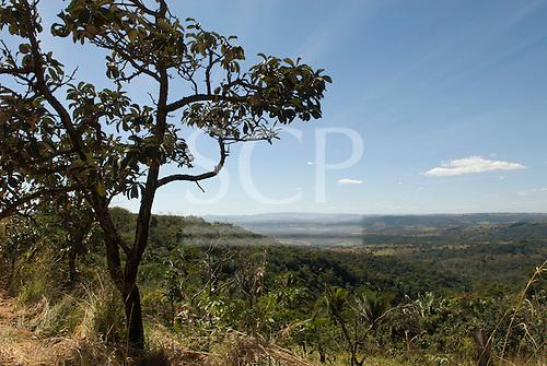 Aguas Lindas, Goias, Brazil. View over cerrados countryside with tree.