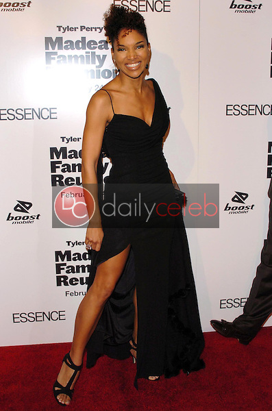 """Lisa Arrindell Anderson<br />at the premiere of """"Madea's Family Reunion"""". Arclight Cinemas, Hollywood, CA. 02-21-06<br />Dave Edwards/DailyCeleb.com 818-249-4998"""