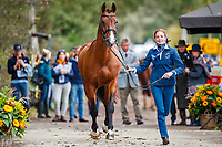 AUS-Catherine Burrell presents Duke during the First Horse Inspection for the CCIO4*-L FEI Nations Cup Eventing. 2019 Military Boekelo-Enschede International Horse Trials. Wednesday 9 October. Copyright Photo: Libby Law Photography.