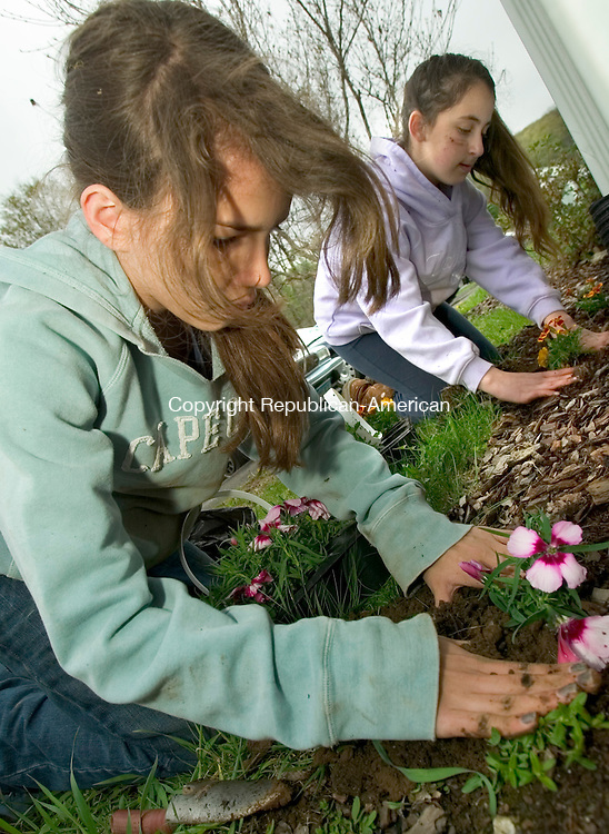 WOODBURY, CT- 04 MAY 2008 --050408JS02-Rebecca Nerzig, 11, and Rachel Ojalbo, 12, both of Southbury, plant flowers for a resident of Spruce Bank Farm housing complex in Woodbury on Sunday. Sixth-grade students from the B'nai Israel religious school in Southbury were sprucing up the complex as part of Mitzvah Day, a day of good deeds. <br /> Jim Shannon / Republican-American