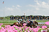 What a beautiful day for a horse race, breaking from the gate at Delaware Park on 8/13/14