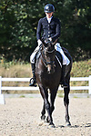 08/09/2019 - Class 9 - British dressage - Brook Farm training centre - UK