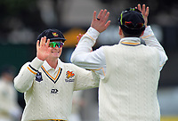 Wellington's Ollie Newton congratulates Wellington's Michael Bracewell on his fielding after the run out of Otago's Hamish Rutherford on day one of the Plunket Shield cricket match between the Wellington Firebirds and Otago Volts at Basin Reserve in Wellington, New Zealand on Monday, 21 October 2019. Photo: Dave Lintott / lintottphoto.co.nz