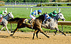 Vip winning at Delaware Park on 10/10/12