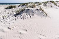D&uuml;nen von Dueodde auf der Insel Bornholm, D&auml;nemark, Europa<br /> dunes of Dueodde, Isle of Bornholm Denmark