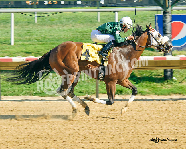 Manille winning at Delaware Park on 8/25/15