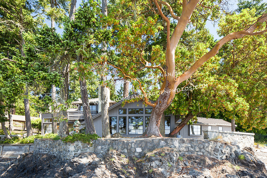 A home on remote Shaw Island with a graceful Madrone tree. This image is available through an alternate architectural stock image agency, Collinstock located here: http://www.collinstock.com