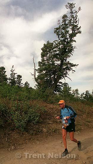Dave Tavernini. Runner near Francis Peak. Wasatch 100 Endurance Run.<br />