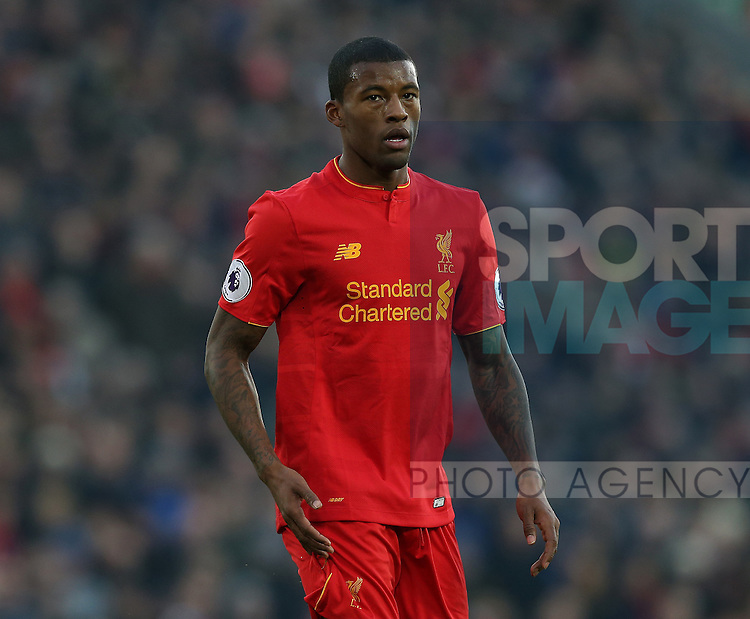 Georginio Wijnaldum of Liverpool during the Premier League match at the Anfield Stadium, Liverpool. Picture date: November 26th, 2016. Pic Simon Bellis/Sportimage