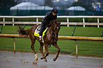 September 3, 2020:  Attachment Rate exercises as horses prepare for the 2020 Kentucky Derby and Kentucky Oaks at Churchill Downs in Louisville, Kentucky. The race is being run without fans due to the coronavirus pandemic that has gripped the world and nation for much of the year. Evers/Eclipse Sportswire/CSM