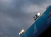 Ticker tape and streamers fall from the stadium after the match<br /> <br /> Photographer Alex Dodd/CameraSport<br /> <br /> The EFL Sky Bet Championship - Leeds United v Birmingham City - Saturday 19th October 2019 - Elland Road - Leeds<br /> <br /> World Copyright © 2019 CameraSport. All rights reserved. 43 Linden Ave. Countesthorpe. Leicester. England. LE8 5PG - Tel: +44 (0) 116 277 4147 - admin@camerasport.com - www.camerasport.com