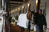 May 1, 2014: California Chrome at Churchill Downs in Louisville, KY. Zoe Metz/ESW/CSM