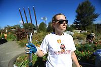 HR Service Day 2012