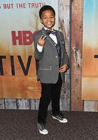 "10 January 2019 - Hollywood, California - Isaiah C. Morgan. ""True Detective"" third season premiere held at Directors Guild of America. Photo Credit: Birdie Thompson/AdMedia"