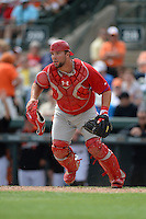 Philadelphia Phillies catcher Cameron Rupp (29) during a spring training game against the Baltimore Orioles on March 7, 2014 at Ed Smith Stadium in Sarasota, Florida.  Baltimore defeated Philadelphia 15-4.  (Mike Janes/Four Seam Images)