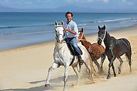 Horses from the local stables are exercised along the miles of sandy beach on the Troia peninsula