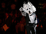 "San Antonio mascot, ""The Fox"" entertains fans during Game 2 of the WNBA Finals between the Detroit Shock and the San Antonio Silver Stars, Oct. 3, 2008, at the AT&T Center in San Antonio. Detroit won 69 - 61 to go up 2 - 0 in the best-of-five series. (Darren Abate/pressphotointl.com)"