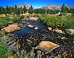 A Quiet, Stream Running Through Tuolumne Meadows, Yosemite National Park, California