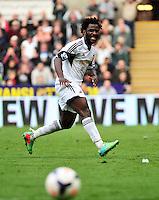 Swansea v Norwich, Liberty Stadium, Saturday 29th march 2014...<br /> <br /> <br /> <br /> Swansea's Wilfried Bony