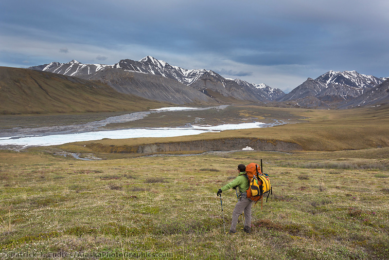 Overview of the Ivishak river, Alaska. Arctic National Wildlife Refuge, Brooks Range, Arctic Alaska.