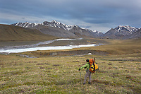 Overview of the Ivishak river, Alaska. Arctic National Wildlife Refuge, Brooks Range, Arctic Alaska.