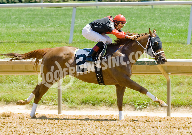 Star Searcher winning at Delaware Park on 5/31/12