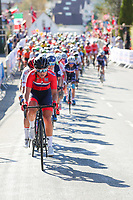 Picture by Alex Whitehead/SWpix.com - 23/09/2017 - Cycling - 2017 UCI Road World Championships, Day 7 - Bergen, Norway - Norway's Susanne Andersen during the Elite Women's Race.