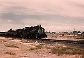 D&amp;RGW #491 leading a double-headed freight at a town.<br /> D&amp;RGW