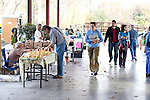 November 23, 2010. Durham, NC.. Customers arrive at the Durham Farmer's Market holiday sale..   The sweet potato seems to be having a comeback, with many farmers increasing their planting of the potato's numerous varieties, as well as many restaurants including it on their menu in various forms such as the ever popular sweet potato fry.