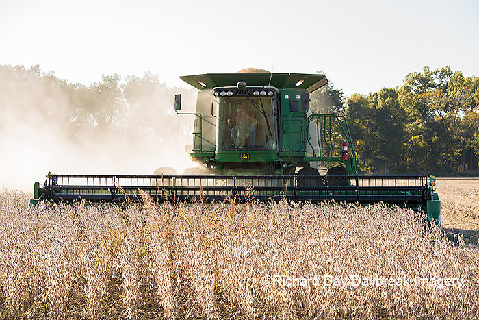 63801-07306 Soybean harvest with John Deere combine in Marion Co. IL