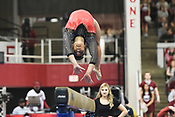 Razorback Gymnastics