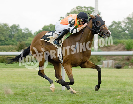 Tippie Tap winning at Delaware Park on 6/25/12