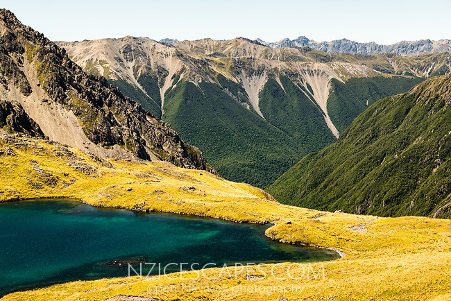 Lake Angelus with St. Arnaud Ranges in background, Nelson Lake National Park, South Island, New Zealand, NZ