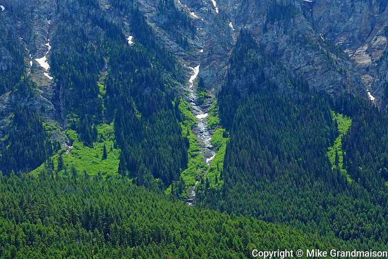 Hillside of the Interior Plateau<br /> Lillooet<br /> British Columbia<br /> Canada
