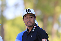 Hideto Tanihara (JPN) tees off the 13th tee during Thursday's Round 1 of the 2018 Turkish Airlines Open hosted by Regnum Carya Golf &amp; Spa Resort, Antalya, Turkey. 1st November 2018.<br /> Picture: Eoin Clarke | Golffile<br /> <br /> <br /> All photos usage must carry mandatory copyright credit (&copy; Golffile | Eoin Clarke)