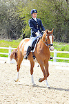 12/04/2015 - Class 8 - Medium 75 - British Dressage - Brook Farm Training Centre