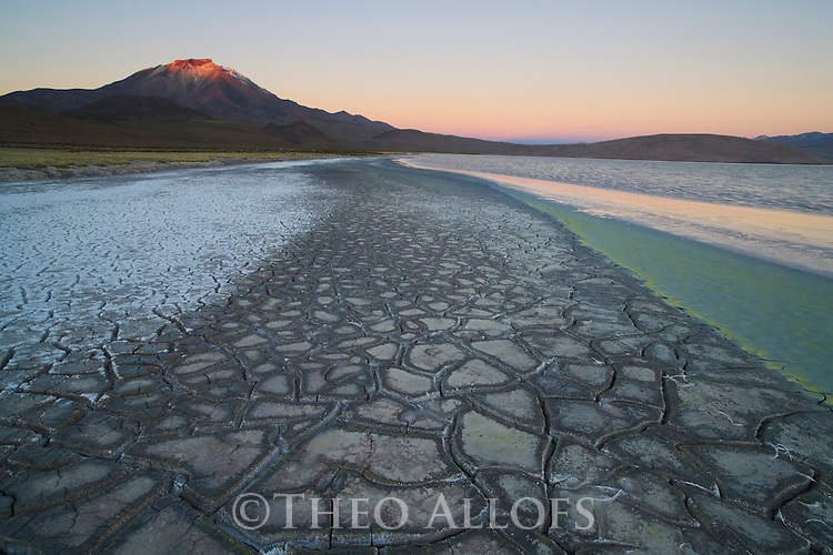 "Colorful drought patterns in mineral rich ground at edge of salt lake ""Salar de Surire"", in the Andes in northeastern Chile near the Bolivian border, natural monument, home to 3 species of flamingos"