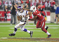 Dec 6, 2009; Glendale, AZ, USA; Minnesota Vikings tight end (81) Visanthe Shiancoe is tackled by Arizona Cardinals safety (24) Adrian Wilson at University of Phoenix Stadium. The Cardinals defeated the Vikings 30-17. Mandatory Credit: Mark J. Rebilas-