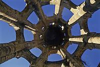Europe/France/Poitou-Charentes/86/Vienne/Charroux: Tour de la lanterne de l'Abbaye Saint-Sauveur
